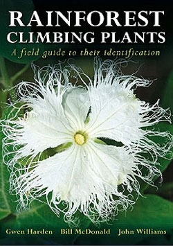Rainforest Climbing Plants