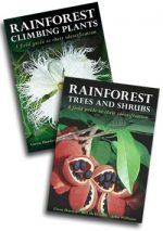 rainforest-combo-2-books