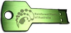 rainforest-usb-key