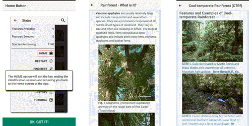 Rainforest Plans of Australia Mobile App